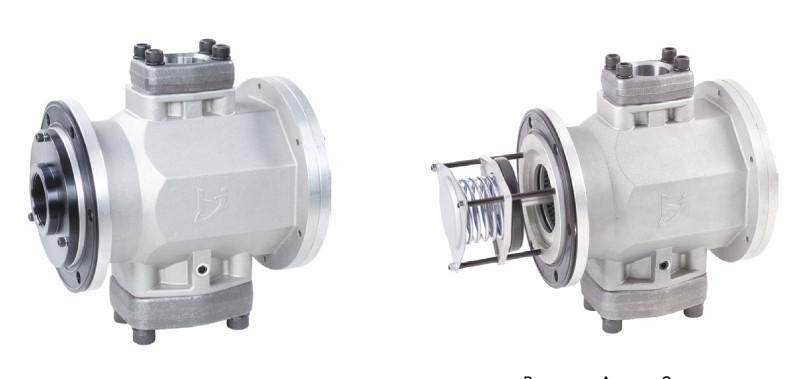 SR2 series tank-outside double-port magnetic flange filter